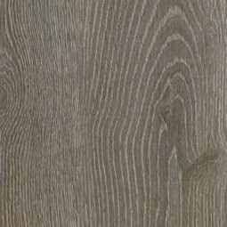 CHÊNE DES ALPES - Parquet stratifié 8 mm